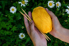 Female hands holding a ball of yellow cotton yarn and knitting needles on background green grass Royalty Free Stock Photography
