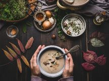 Female hands holding bowl with autumn vegetables chestnuts creamy soup on dark rustic kitchen table background with fall leaves, t royalty free stock photos
