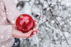 Female hands holding a Christmas red ball. Frosty winter day in snowy forest. Stock Image
