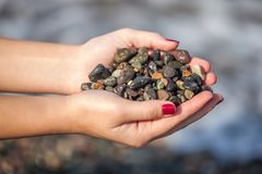 Female hands holding colorful gravels collected from the beach.  Royalty Free Stock Images