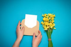 Female hands holding craft envelope with a card, fresh yellow daffodils on a blue background. Office desk, spring concept stock image