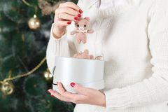Female hands holding a cute happy bear Royalty Free Stock Photo