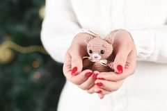 Female hands holding a cute happy bear Stock Photography