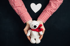 Female hands holding a cute white bear. Female hands holding a cute teddy bear. Cute Christmas present. Winter holidays concept Stock Photos