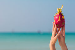 Female hands holding a dragon fruit on sea background. Female hands holding a dragon fruit on seashore background royalty free stock photography