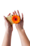 Female Hands Holding Flower and Bar of Soap Royalty Free Stock Images