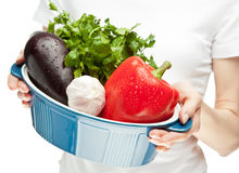Female hands holding fresh vegetables Royalty Free Stock Image