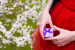 Female hands holding gift box with blooming branches on backgrou Royalty Free Stock Photo