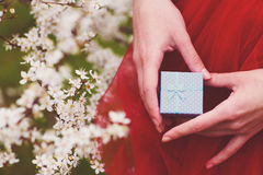 Female hands holding gift box with blooming branches on backgrou Stock Image