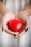 Female Hands Holding a Heart. Closeup of female hands holding a heart. Muted colors Stock Photos