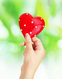 Female hands holding heart. Female hands holding red heart royalty free stock image