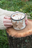 Female Hands Holding a Mug of Hot Chocolate with Cookies on a Log Stock Photos