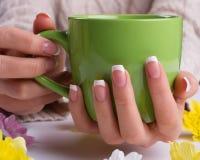 Female hands holding a mug. Stock Image