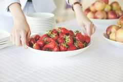 Female hands holding a plate full of strawberries stock images
