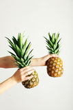 Female hands holding ripe pineapple Royalty Free Stock Image