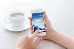 female hands holding white iPhone 5s with app Flickr on the screen in the office stock photos