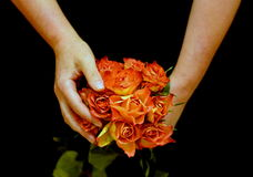 Female hands holding yellow roses. Female hands holding warm yellow roses. Black background Stock Photos