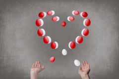 Female hands juggle eggs in the form of Valentine`s heart . Food  concept. Female hands juggle eggs in the form of Valentine`s heart . Food and relations Stock Image