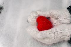 Female hands in knitted white mittens with heart of snow in winter day. stock images