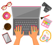 Female hands on a laptop royalty free illustration