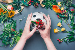 Female hands make Creative autumn floral arrangement with various flowers and plant leaves arrangement on blue table , top view. F. Lorist workplace. Greeting Stock Photography