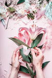 Female hands making lovely pink lily flowers bouquet on pastel table with florist decoration equipment, top view. Creative Floris Stock Photo