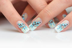 Female hands with manicure Stock Images