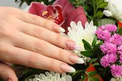 Female hands with manicure closeup Stock Image