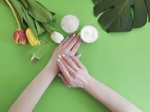 Female hands manicure beauty , spring cosmetic creative cream moisturizing , monstera tulip leaf on a background. Female hands manicure cosmetic cream, monstera stock photos