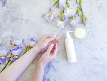 Female hands manicure, cream cosmetic flower iris on gray concrete background stock photography