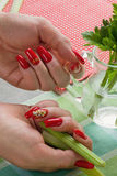 Female hands with manicure hold a jug  water and greens. Female hands with bright manicure hold a jug with water and greens Stock Image