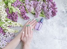 Female hands manicure, natural therapy wellness healthy cosmetic beautiful cream, lilac flower on gray concrete background. Female hands manicure, cosmetic cream royalty free stock photo