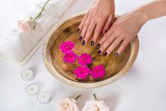 Female hands with manicured fashion nails with purple varnish in a wooden bowl with water and purple flower royalty free stock photos