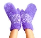 Female hands in mittens stock image