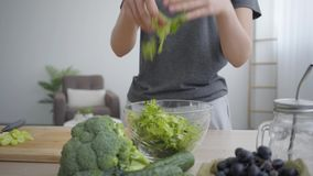 Female hands mixing lettuce in the deep bowl. Unrecognizable woman cooking breakfast in the kitchen. Healthy lifestyle. Camera moving closer. Profession of stock video footage