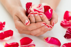 Female Hands With Nail Varnish Holding Rose Petals Stock Photo