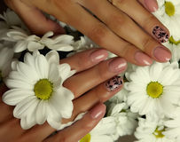 Female hands, nails with beautiful Art manicure Stock Photography