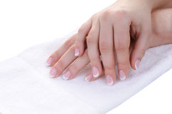 Female hands with nice french manicure royalty free stock photos