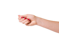Female hands over white background Royalty Free Stock Photos