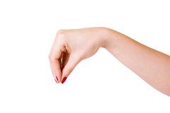 Female hands over white background Stock Image