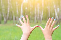 Female hands with painted nails, against the background of nature. Sunlight Stock Photos
