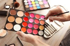 Female hands with palette of lipsticks and tonal foundation Stock Images