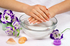 Female hands with perfect french manicure. Beautiful female hands with perfect french manicure in bowl of water decorated with flowers royalty free stock photos
