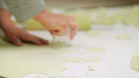 Female hands preparing dumplings stock footage