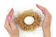 Female hands protecting egg Stock Photo