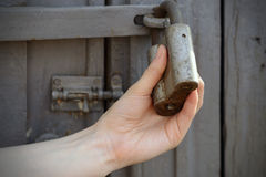 Female hands pulled the gray old padlock stock image