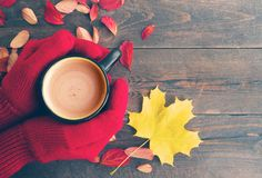 Female hands in red knitted mittens and a cup of coffee with milk on a wooden board with bright autumn leaves Stock Photography