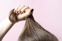 Female hands with red manicure holding hair, pink background, hair care concept stock images
