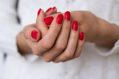 Female hands with red nails Royalty Free Stock Photo