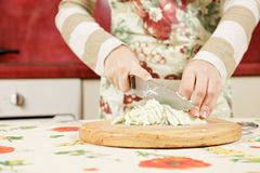 Female hands slicing cabbage Stock Photography